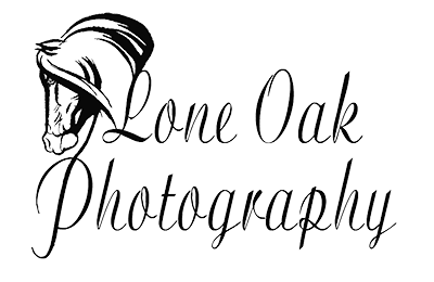 Lone Oak Equine Photography